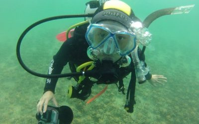 PADI Open Water Course: Half Moon Bay