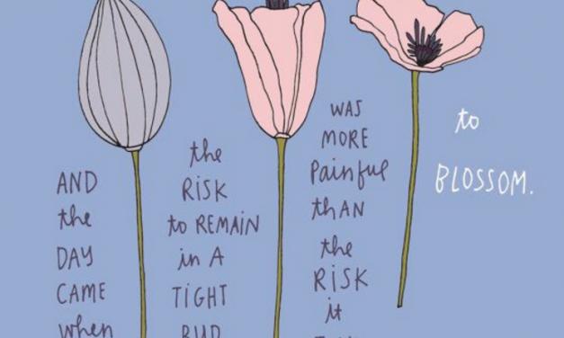 Blossom Away