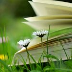 The Author's Publishing Journey – PART 2: The Scope of a Novel Project